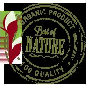 Haselnusszäune aus naturbelassenen Rohstoffen