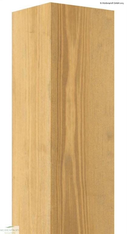 Cambo Modul Holzpfosten aus Robinie