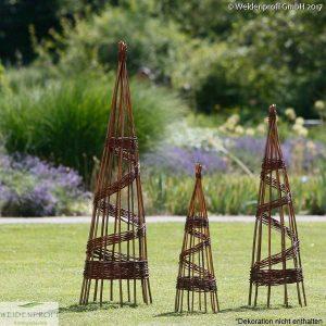 Rankpyramide, Weidenpyramide