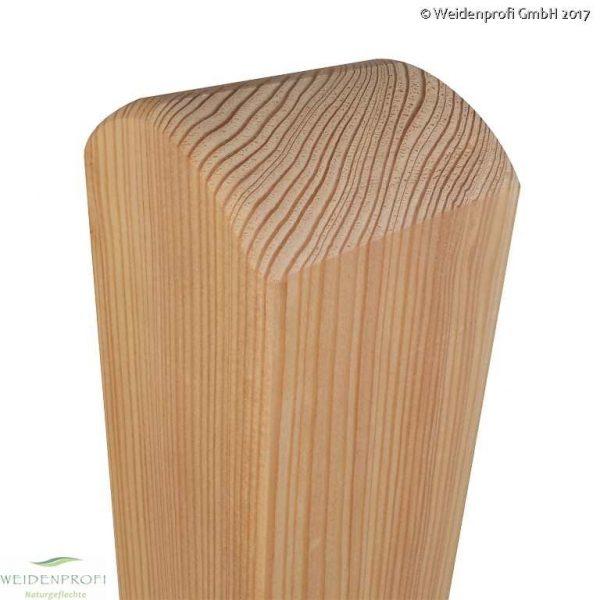 Holzpfosten, Zaunpfosten Lärche, 9 x 9 x 95 cm