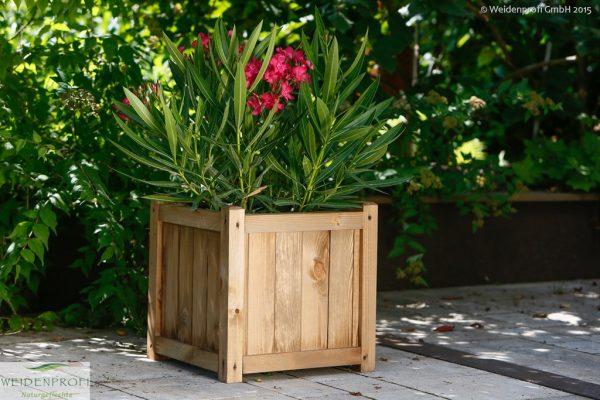 Pflanzkasten, Blumenkasten Kiefer quadratisch 30