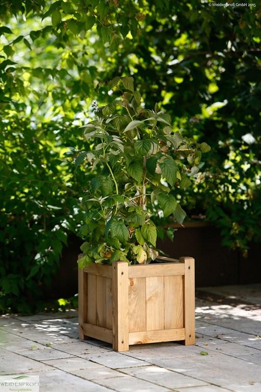 Pflanzkasten, Blumenkasten Kiefer quadratisch 40