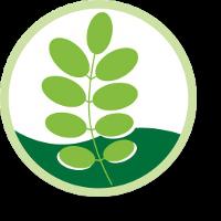Robinie, Robinienzaun Logo